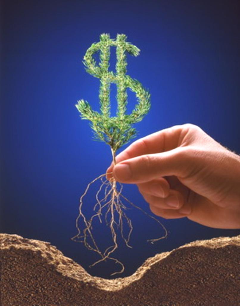 Стоимость высшего образования в 2013 году