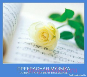 Гармония